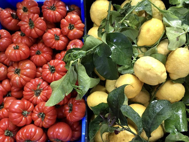 Tips for Vegetarians and Vegans in Cinque Terre
